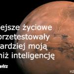 horowtiz-PL.blog-post-feature