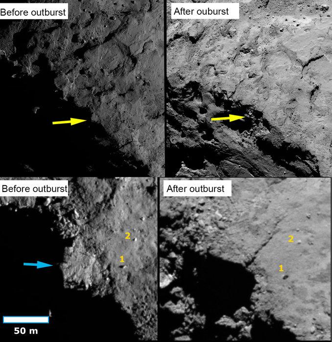 Obrazy przed i po zawaleniu się klifu na komecie 67P/Churyumov-Gerasimenko. W górnych panelach żółte strzałki pokazują położenie skarpy na granicy między oświetloną półkulą północną a ciemną południową półkulą w momentach przed i po wybuchu (odpowiednio wrzesień 2014 i czerwiec 2016). Dolne panele pokazują zbliżenia górnych paneli; niebieska strzałka wskazuje na skarpę, która wydaje się zapadnięta na zdjęciu po wybuchu. Dwa głazy (1 i 2) są oznaczone dla orientacji. Źródło: ESA/Rosetta/MPS for OSIRIS Team MPS/UPD/LAM/IAA/SSO/INTA/UPM/DASP/IDA (CC BY-SA 4.0)